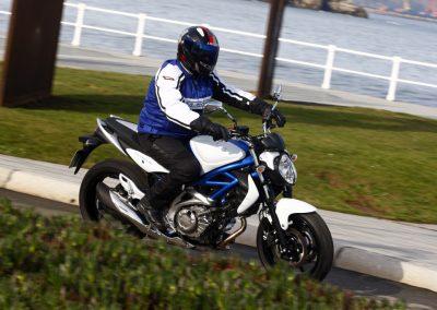Suzuki Gladius 650 (3)
