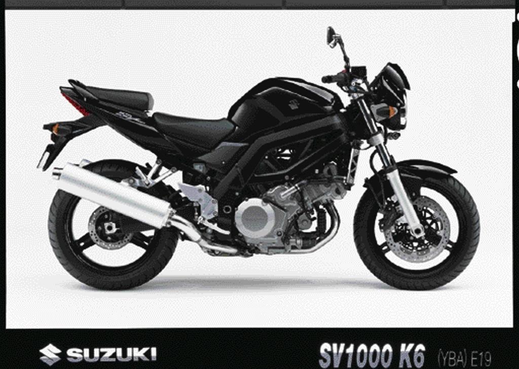 Suzuki SV 1000 (2)
