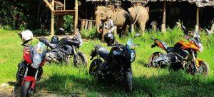 moto-y-viajar-con-elefantes