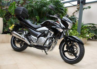 Suzuki Inazuma 250 (6)