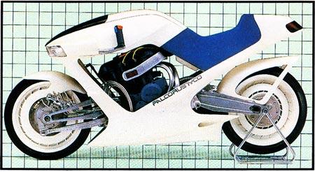 Suzuki Falcorustyco (3)