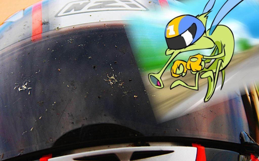 Fotos quitar los mosquitos de la pantalla del casco
